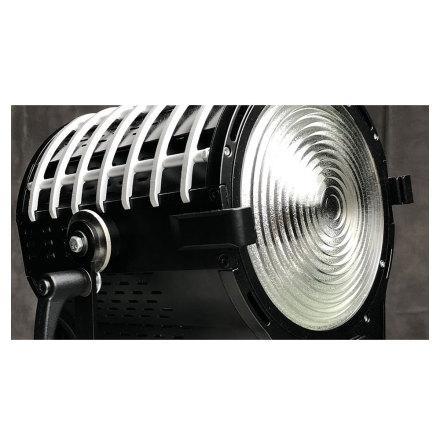 Alpha 300 LED Bi-Color